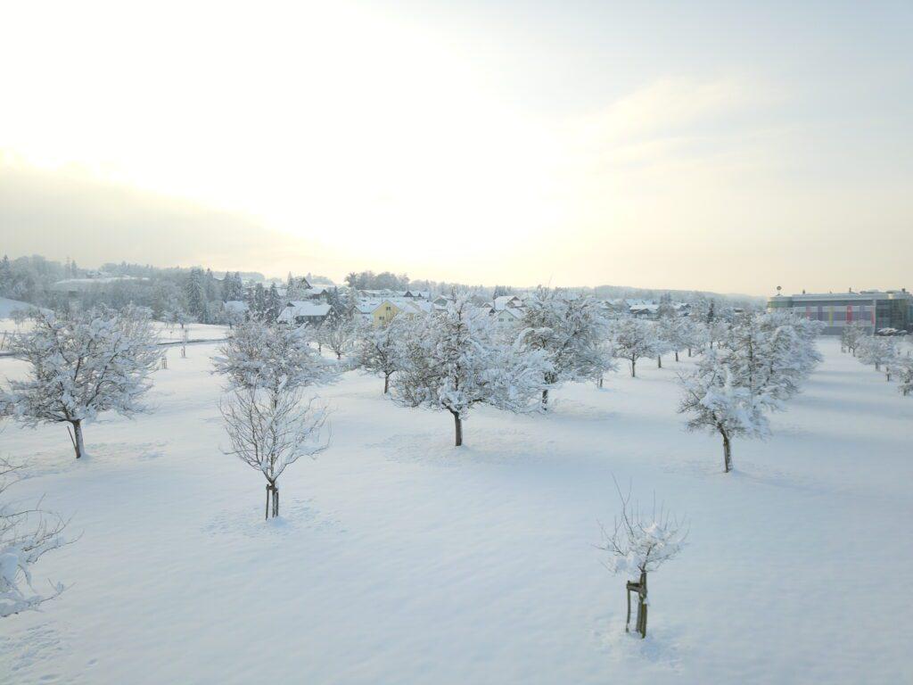 Winterstimmung auf unserem Hof - Grünau